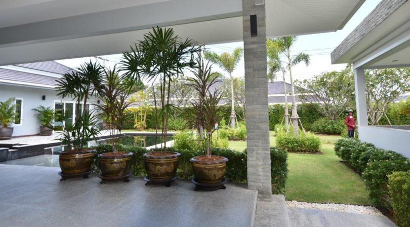06 Lots of patio potsplants 1