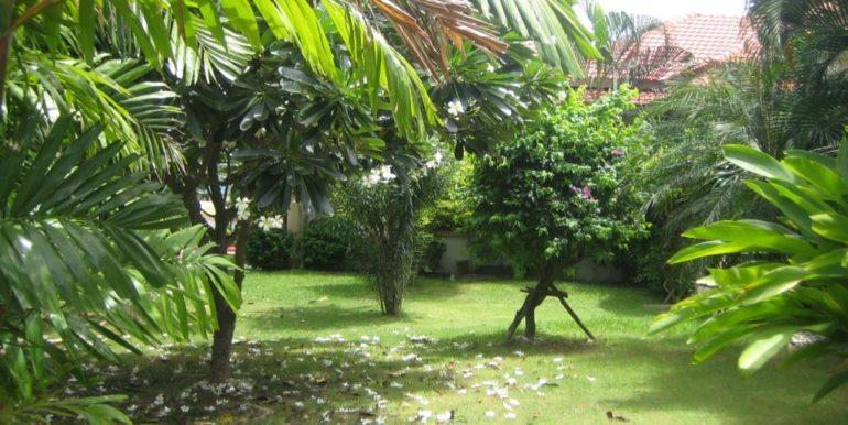 07 Large lush gardens around the house