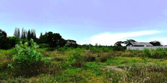 Large Plot of Land in Hua Hin – Hin Lek Fai district