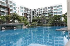 02 Huge swimming pool 60x30 meter