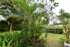 08 Landscaped gardens