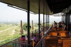 05 Hua Hin Hills Vineyard