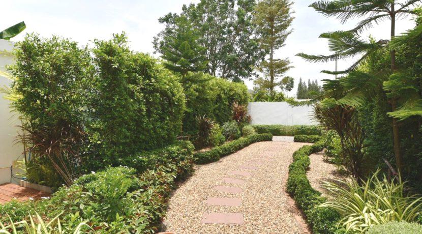 61 Backyard garden