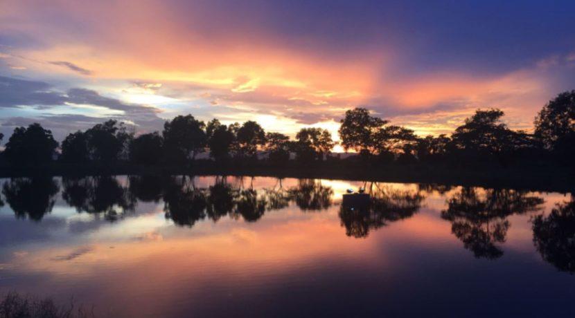 91 SAL Sunset