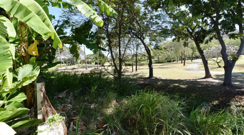 05 View to the golf course