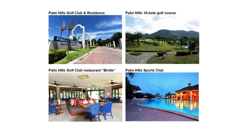 82 Palm Hills Amenities