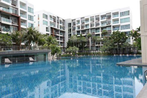 02 Large swimming pool (60x30 meter)
