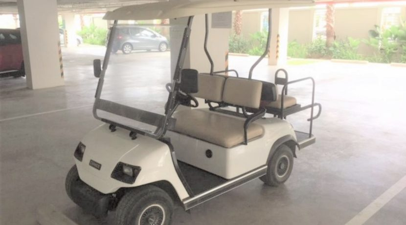 06 Golf cart for local driving