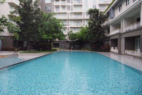 82 Large swimming pool
