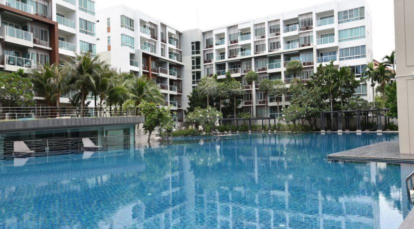 81 Large swimming pool 60x30 meter