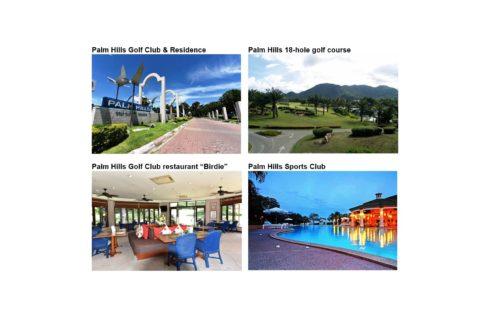 91 Palm Hills Amenity Gallery