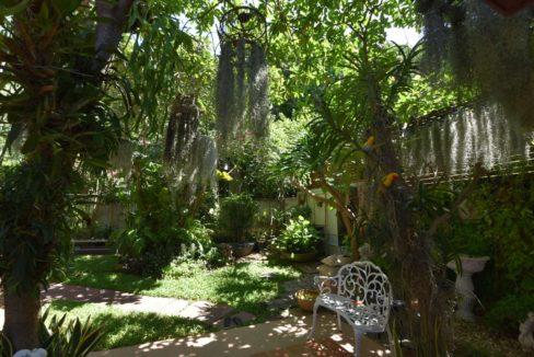 09 Tropical garden