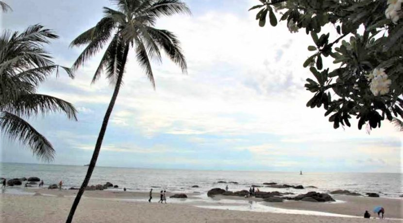 97 Nearby beach