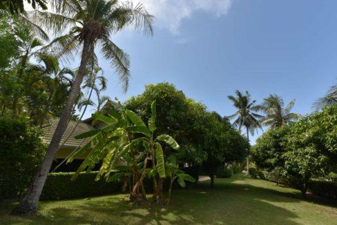 03 Tropical garden areas