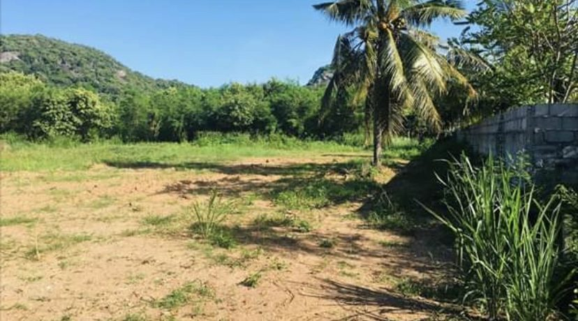 03 Two Large Plots of Land in Kao Tao
