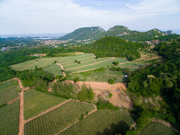 04 Elevated land plots with sea- and mpountain view