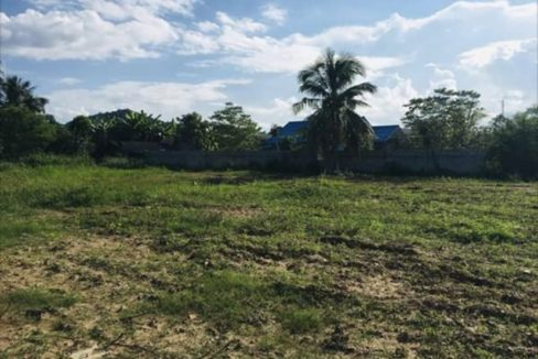05 Two Large Plots of Land in Kao Tao