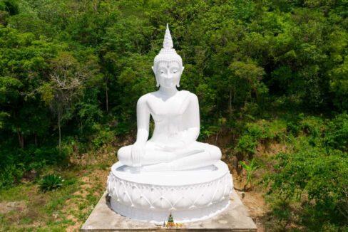 60 Buddha for good luck