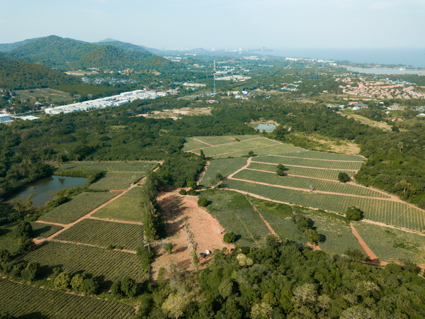02 Elevted land plots with sea- and mountain view