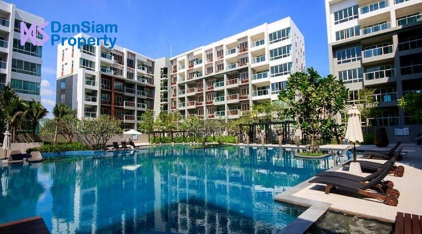 82 Large swimming pool (60x30 meter)