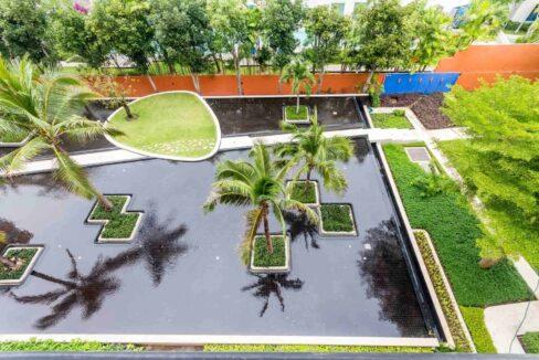 16 Garden view