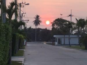 Sunrise at Palm Villas