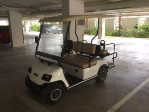 Seacraze Golf cart