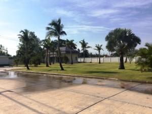 Palm Villa Landscaping